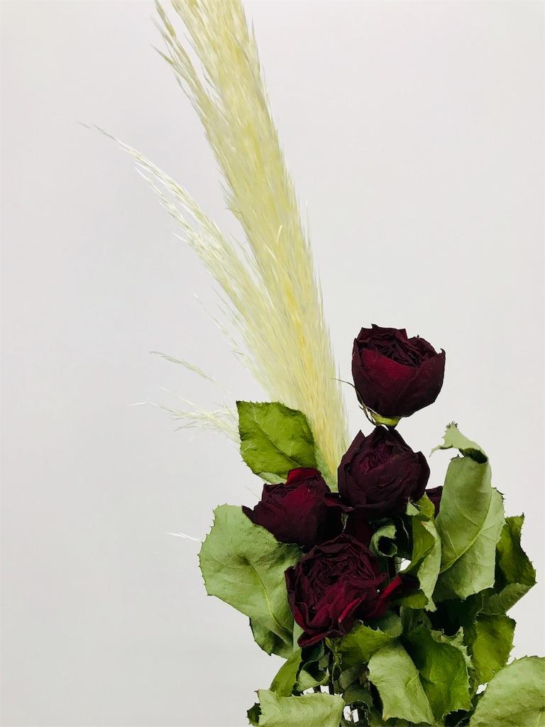 f:id:asunaro-flower:20190806143301j:image