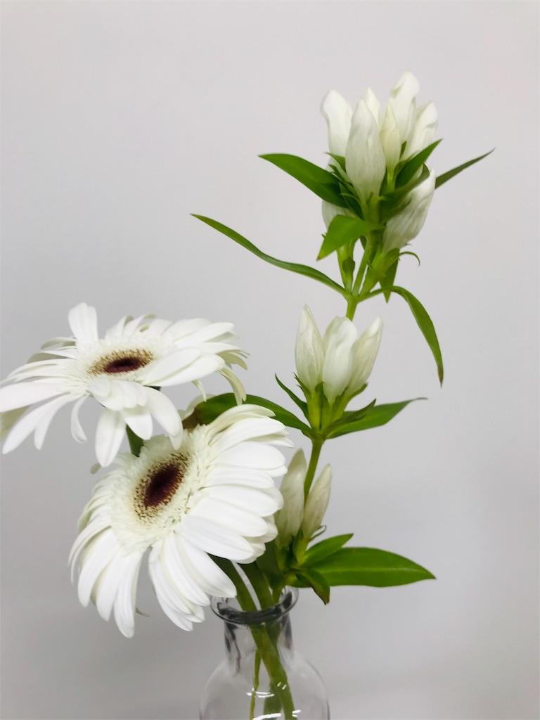 f:id:asunaro-flower:20190815162444j:image