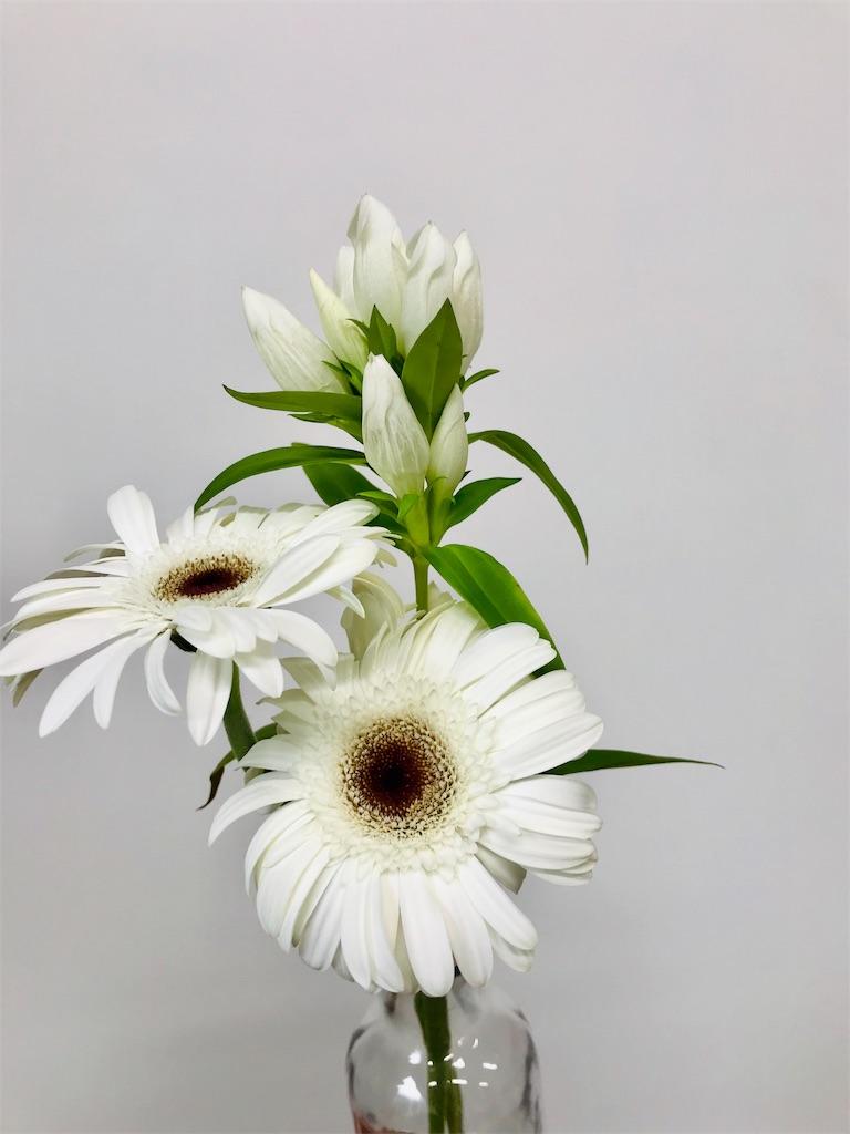 f:id:asunaro-flower:20190815162528j:image