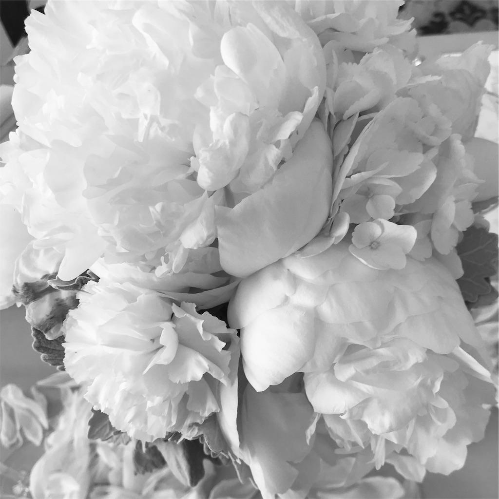 f:id:asunaro-flower:20190915231951j:image