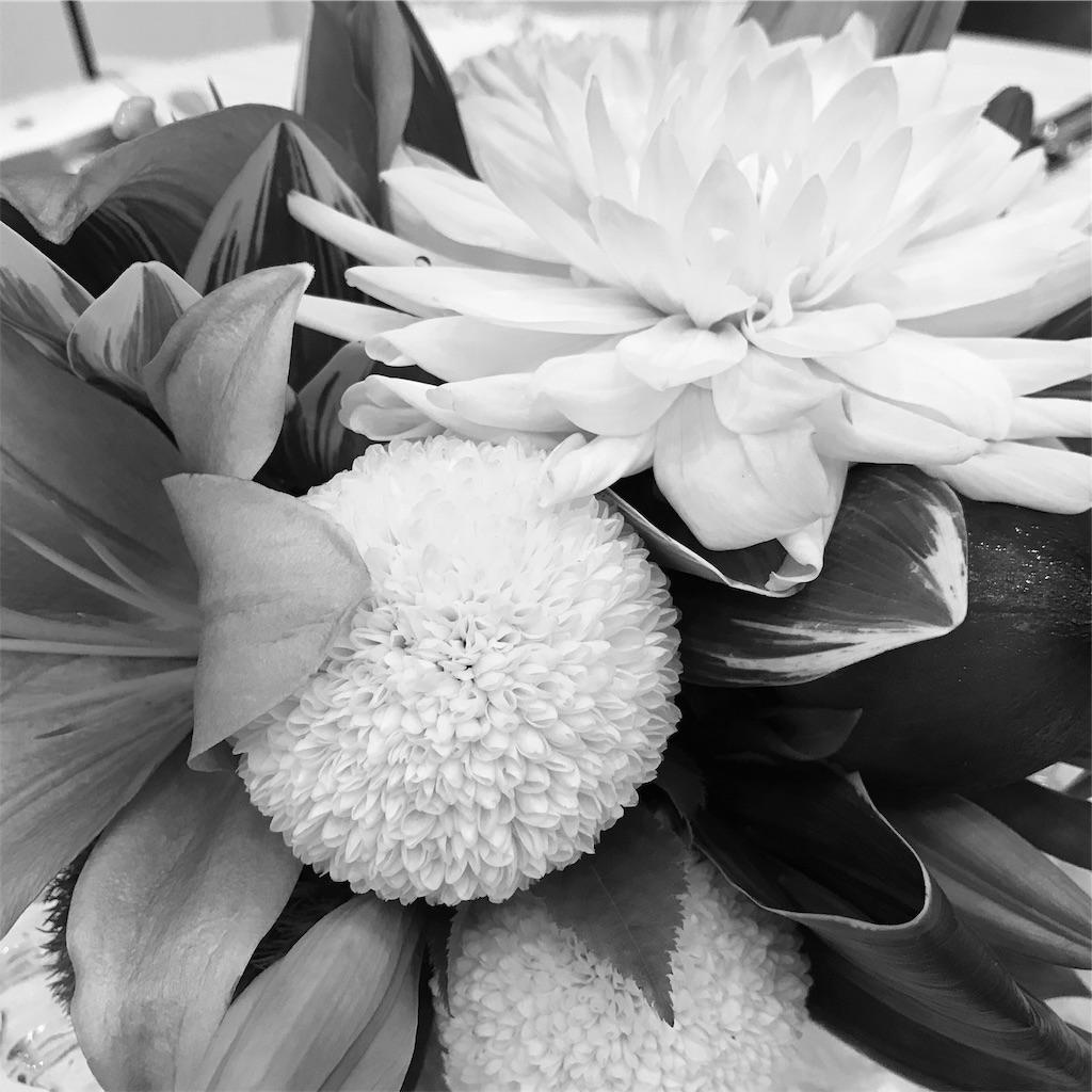 f:id:asunaro-flower:20190915233848j:image