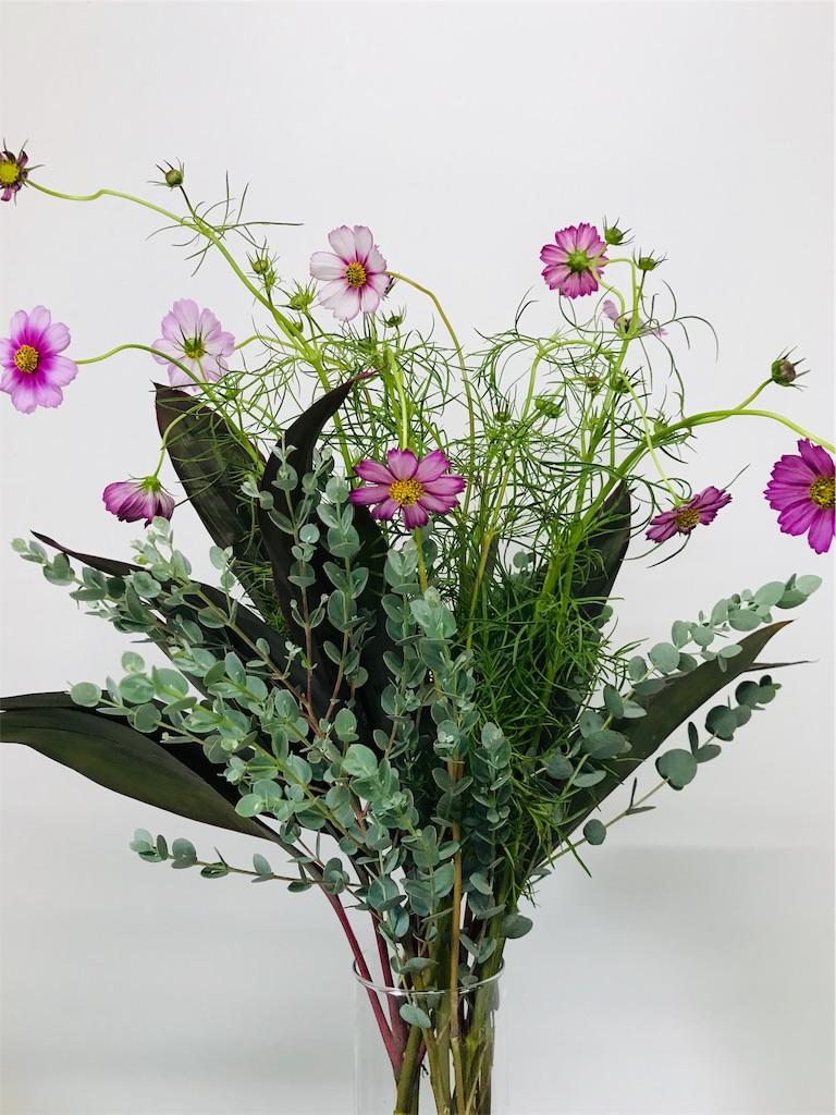 f:id:asunaro-flower:20190928234317j:image