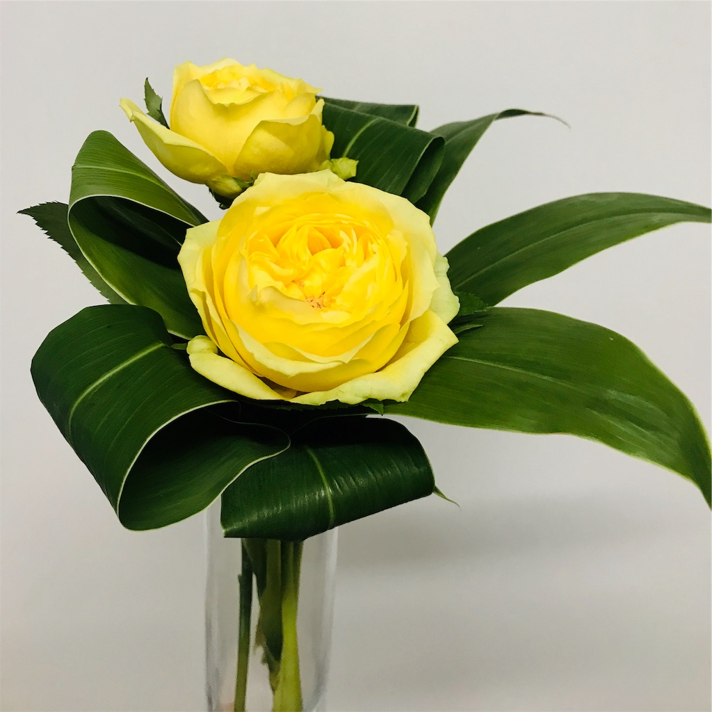 f:id:asunaro-flower:20191011002757j:image
