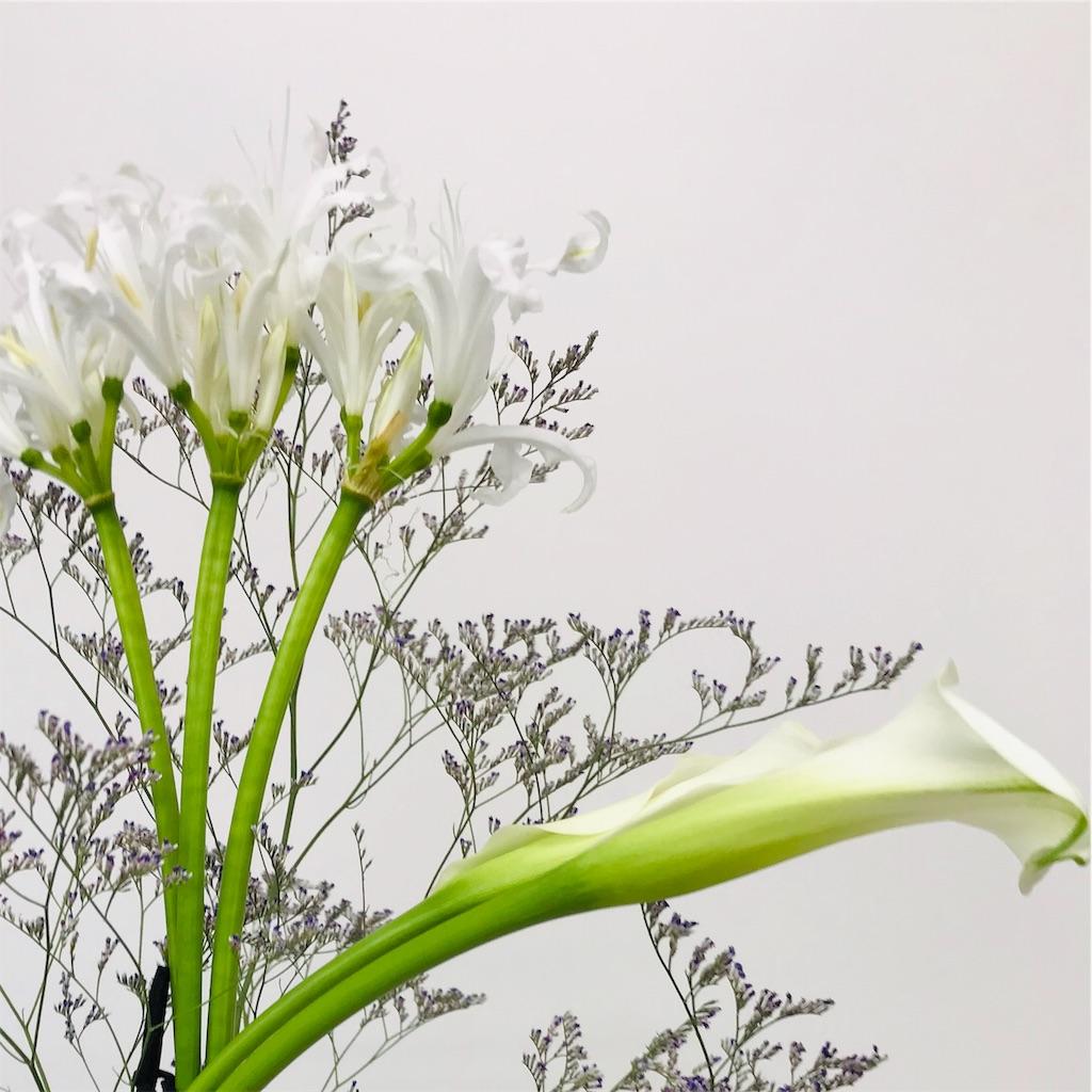 f:id:asunaro-flower:20191022180155j:image