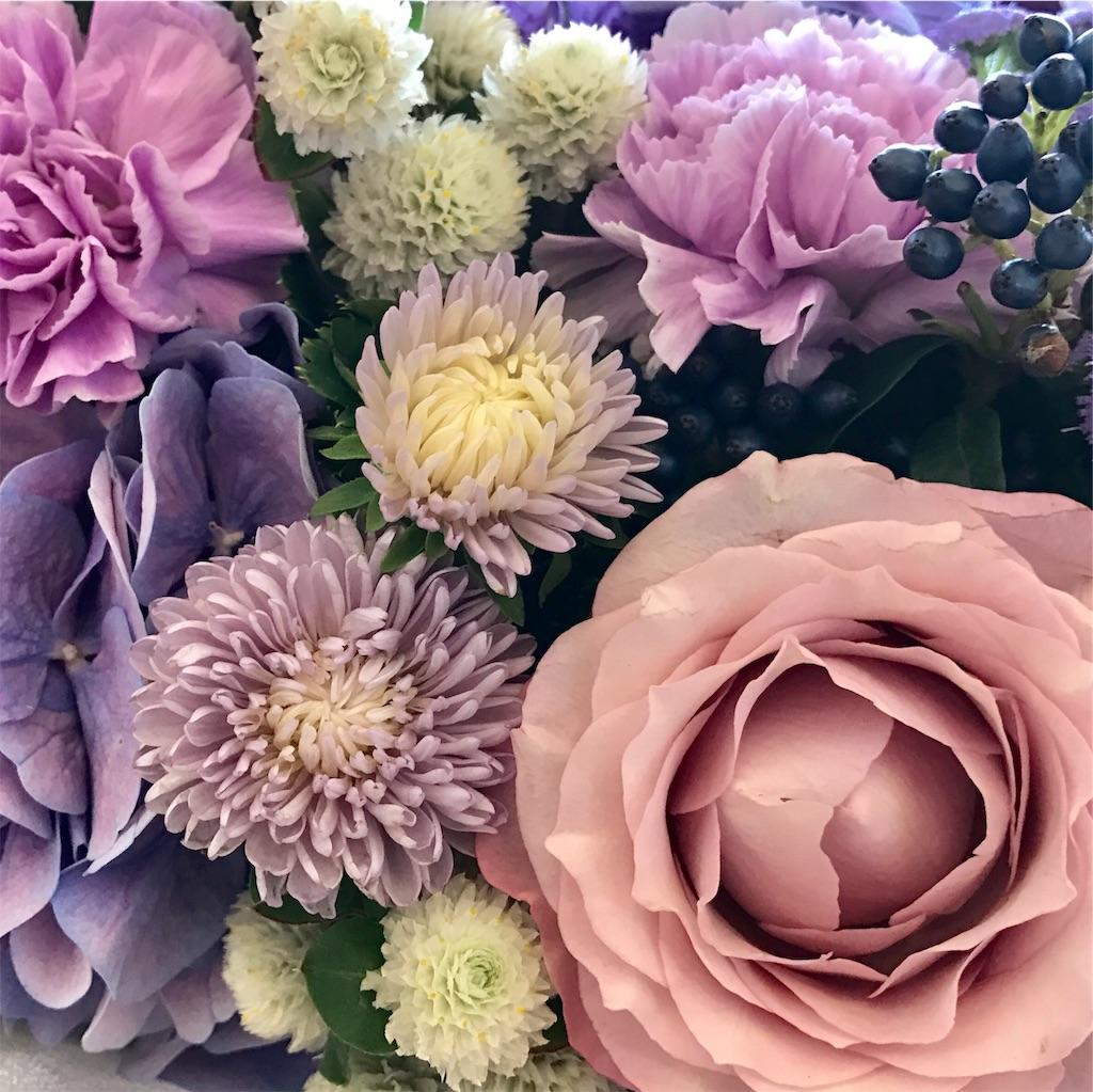 f:id:asunaro-flower:20191029172036j:image