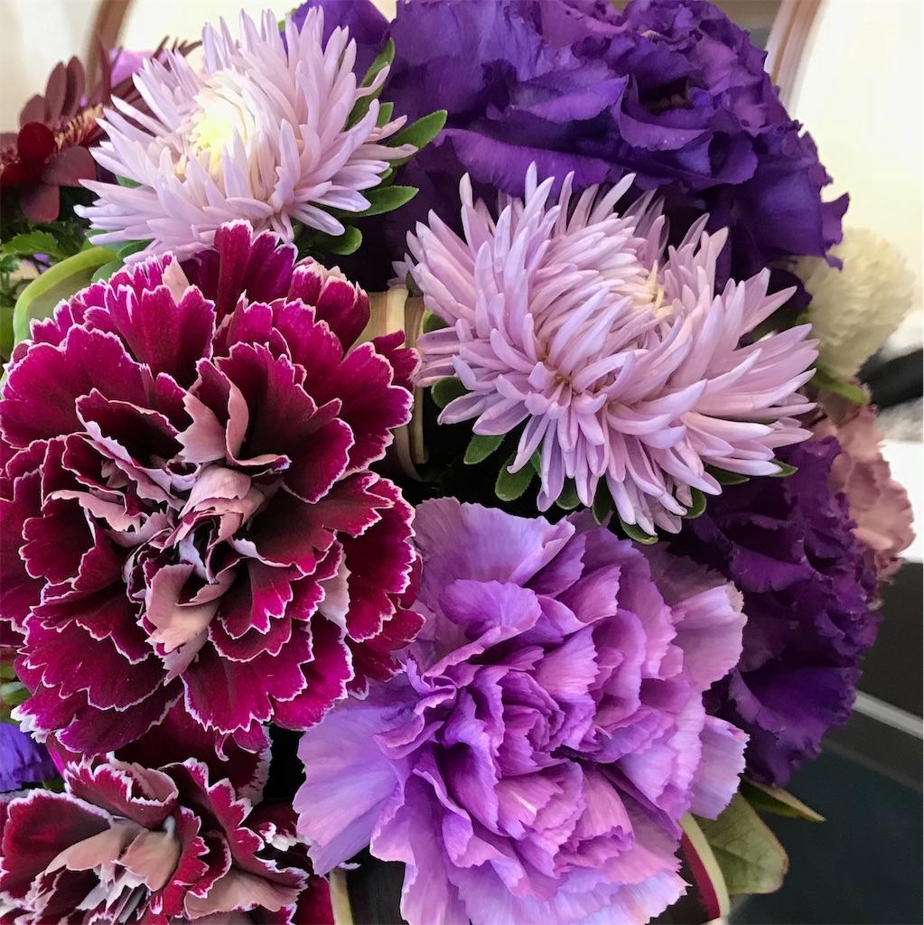 f:id:asunaro-flower:20191029172140j:image