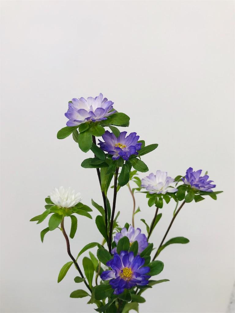 f:id:asunaro-flower:20191029172600j:image