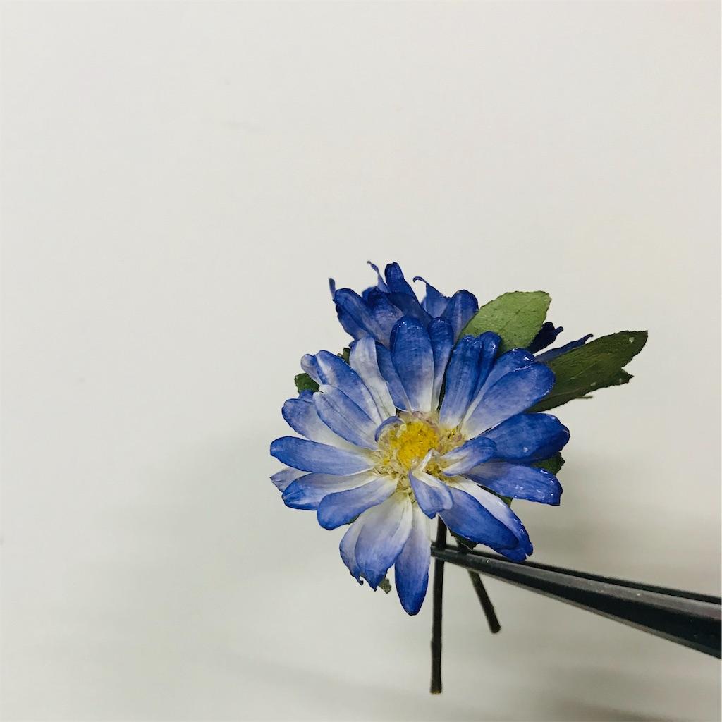 f:id:asunaro-flower:20191029175909j:image