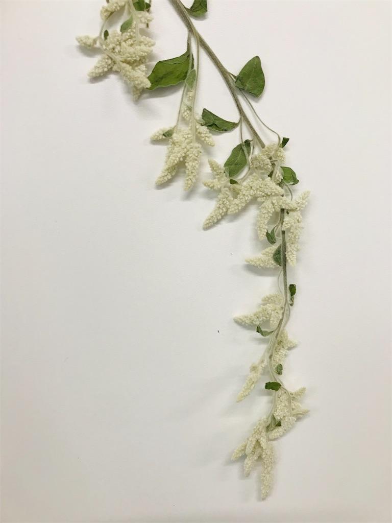 f:id:asunaro-flower:20191109160131j:image