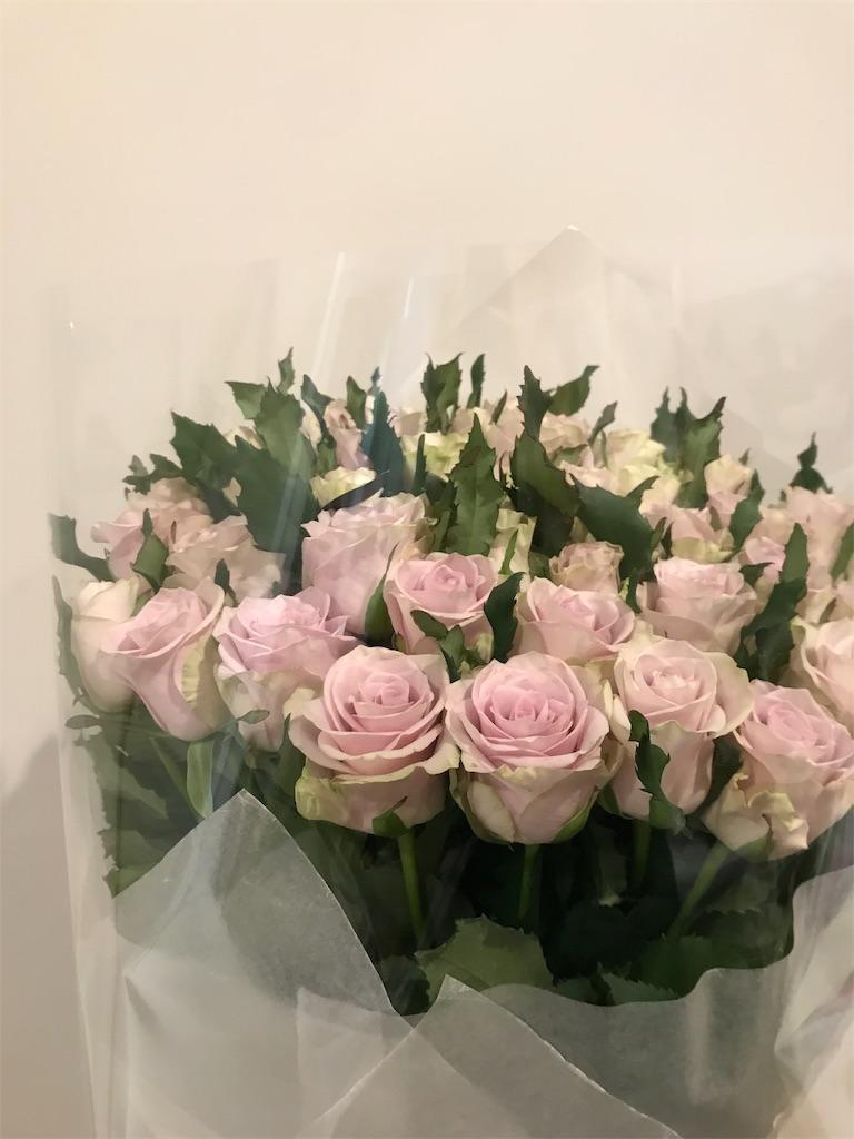 f:id:asunaro-flower:20191114001624j:image