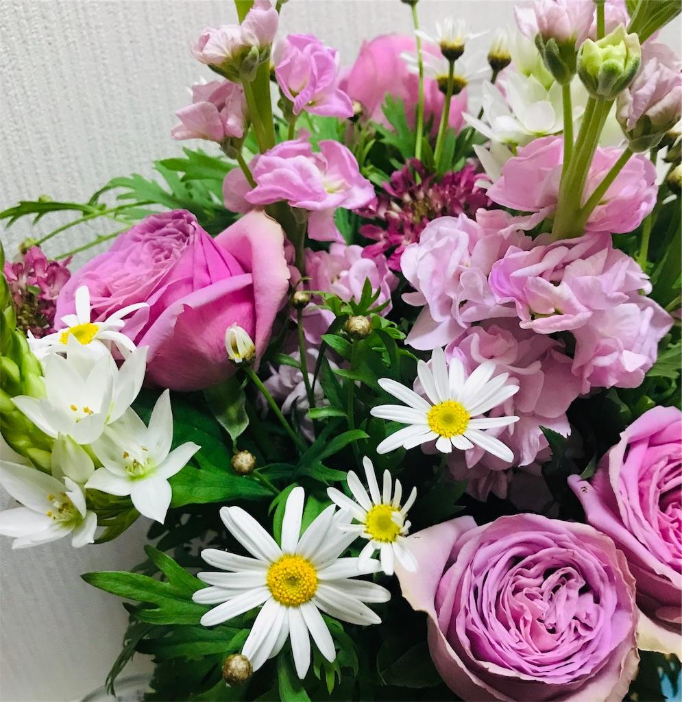f:id:asunaro-flower:20191114110151j:image