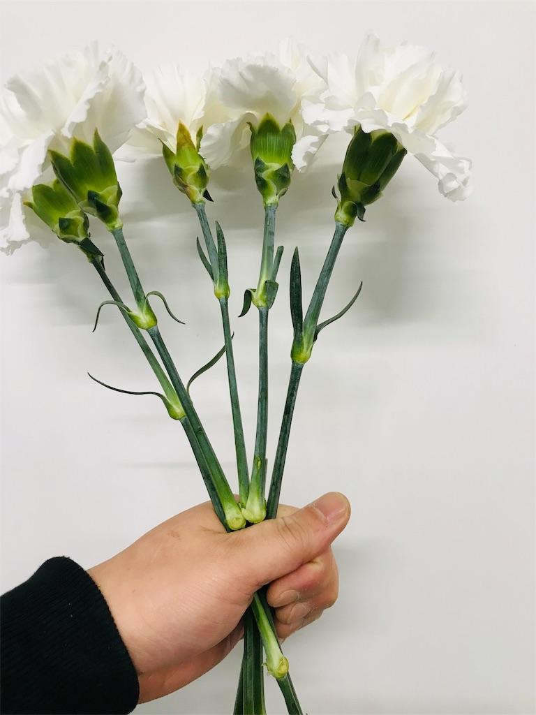f:id:asunaro-flower:20191114123624j:image