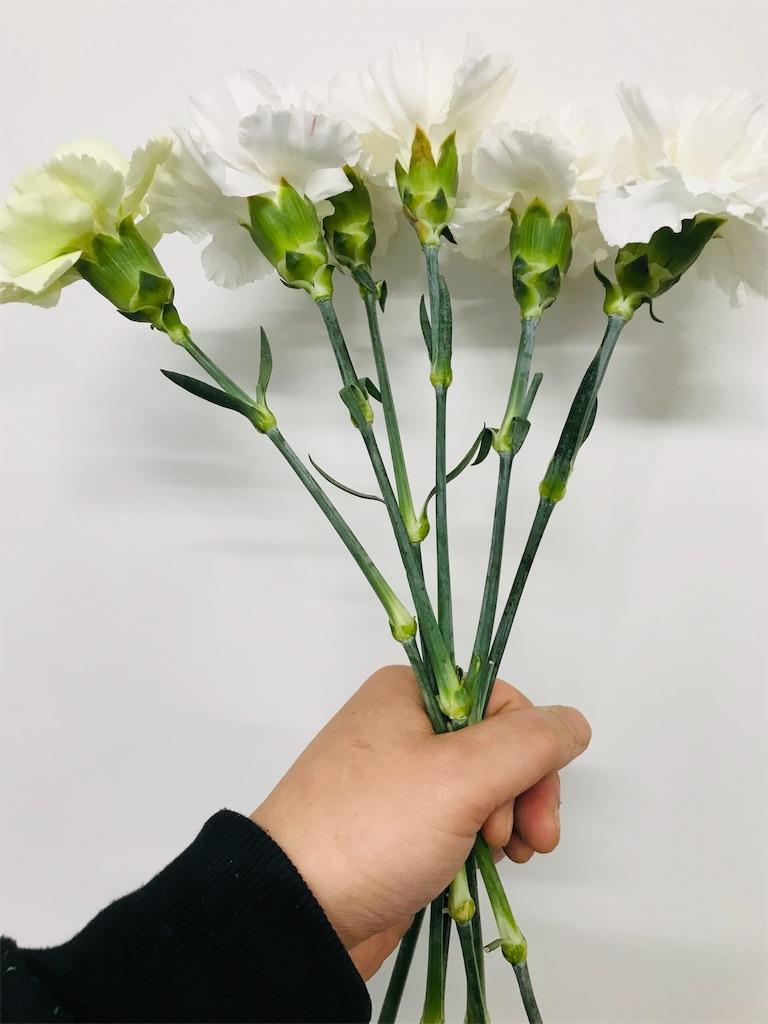 f:id:asunaro-flower:20191114123700j:image
