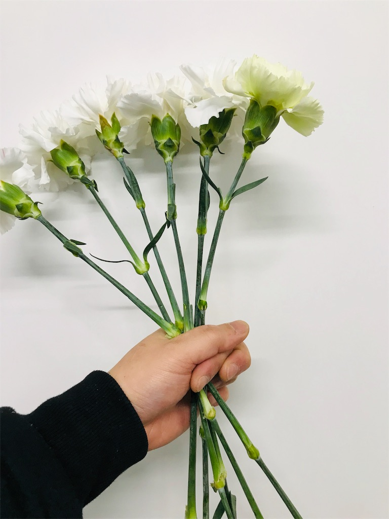 f:id:asunaro-flower:20191114123728j:image