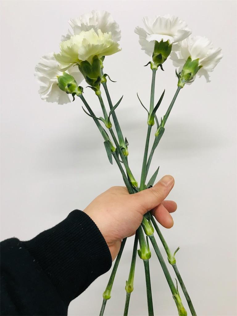 f:id:asunaro-flower:20191114124421j:image