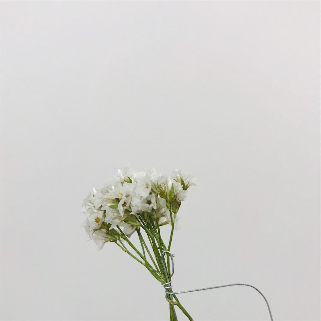 f:id:asunaro-flower:20191118001853j:image
