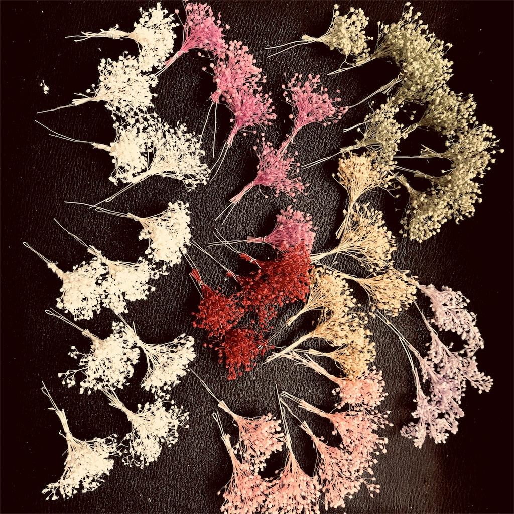 f:id:asunaro-flower:20191118004958j:image