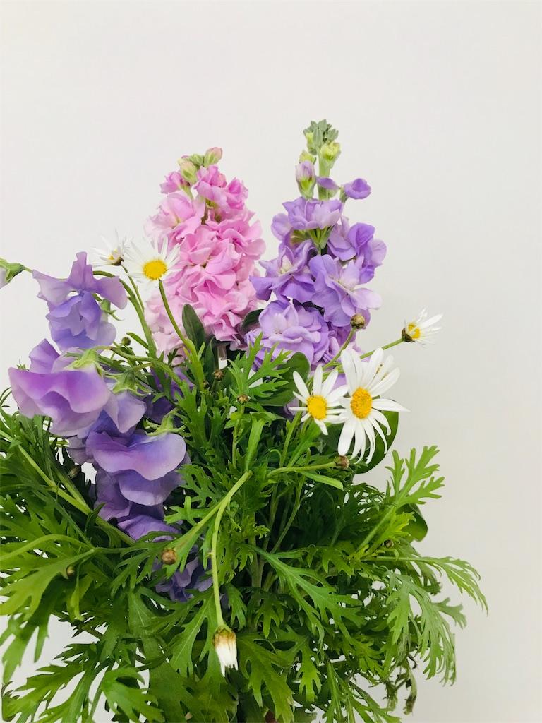 f:id:asunaro-flower:20191123150940j:image