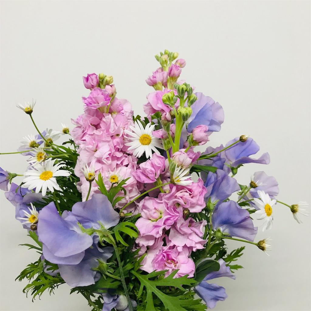 f:id:asunaro-flower:20191128214751j:image