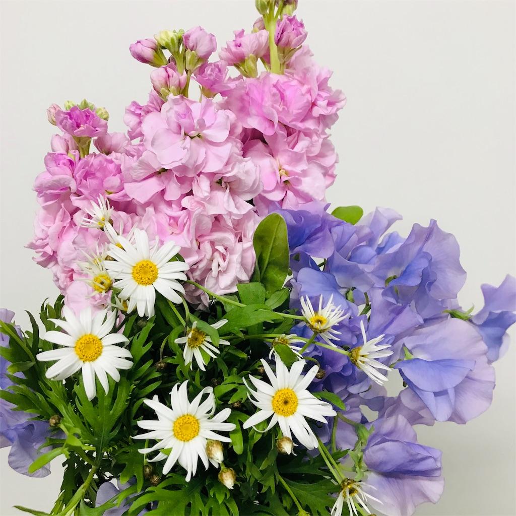f:id:asunaro-flower:20191128214806j:image