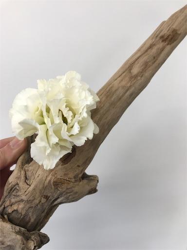 f:id:asunaro-flower:20200111114747j:image