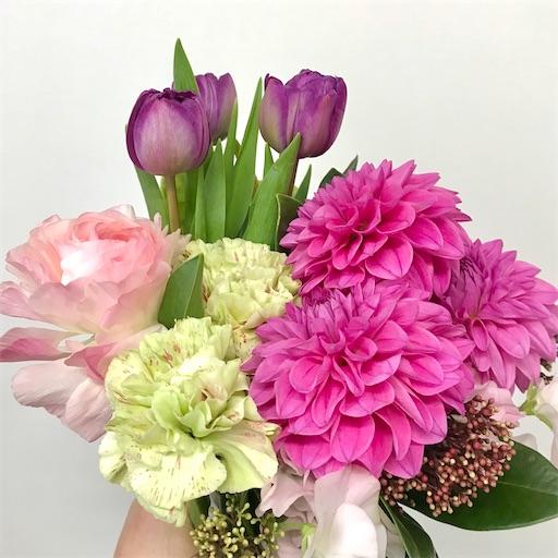 f:id:asunaro-flower:20200128171545j:image