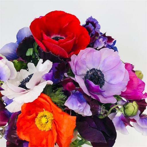 f:id:asunaro-flower:20200128175544j:image