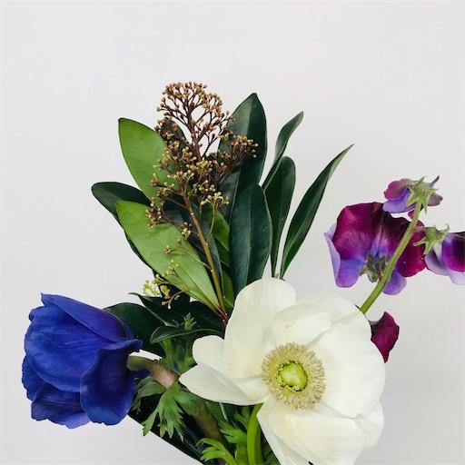 f:id:asunaro-flower:20200128175737j:image