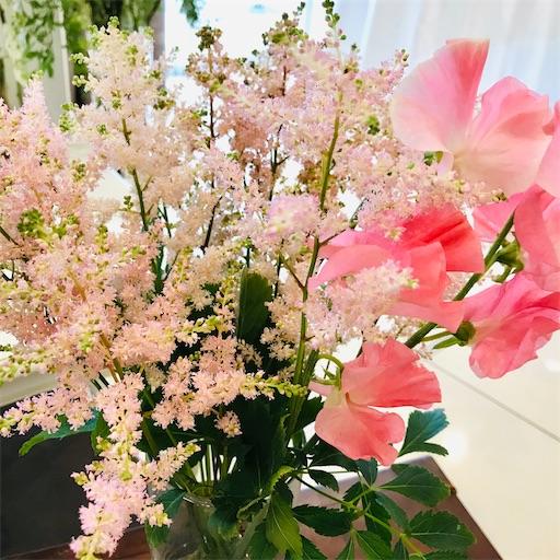 f:id:asunaro-flower:20200208015655j:image