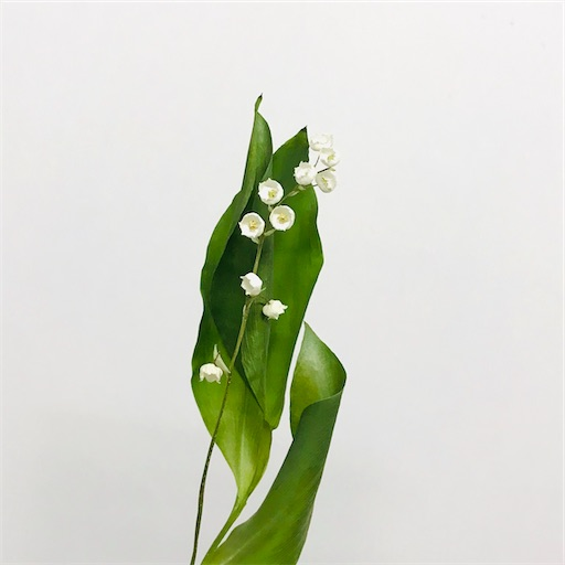 f:id:asunaro-flower:20200323151250j:image