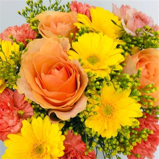 f:id:asunaro-flower:20200330202116j:image