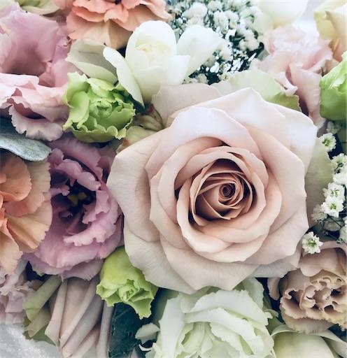 f:id:asunaro-flower:20200330202238j:image