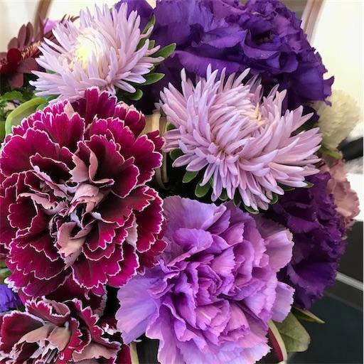 f:id:asunaro-flower:20200610001018j:image