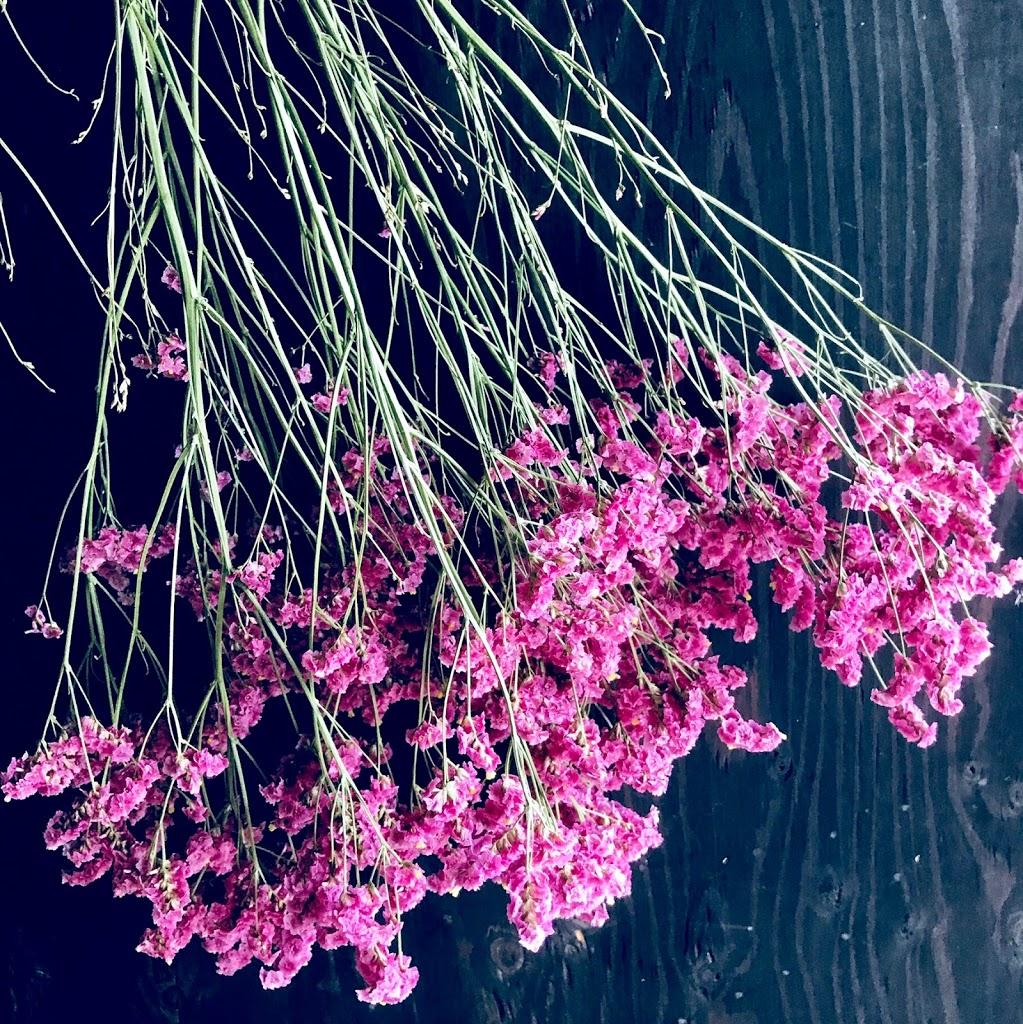 f:id:asunaro-flower:20200613230247j:plain