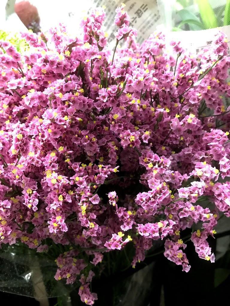 f:id:asunaro-flower:20200613230426j:plain