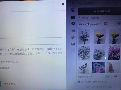 f:id:asunaro-flower:20200614010039j:image