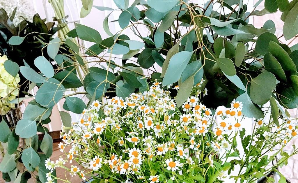 f:id:asunaro-flower:20200614030210j:plain