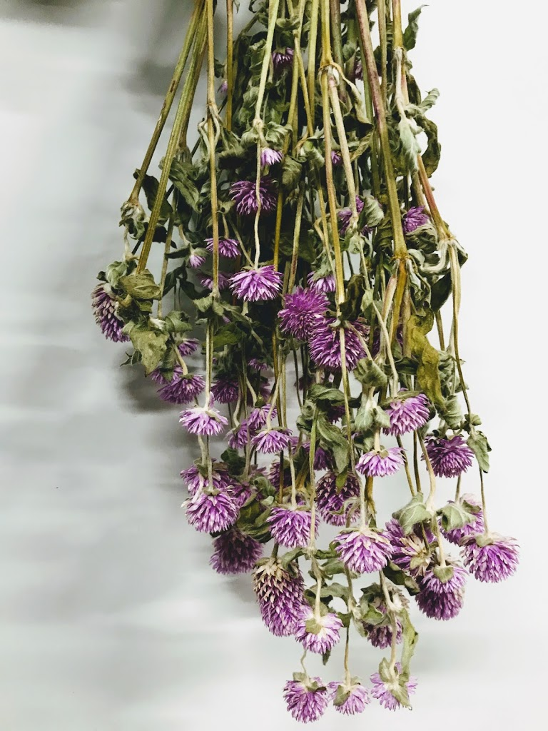 f:id:asunaro-flower:20200614034926j:plain
