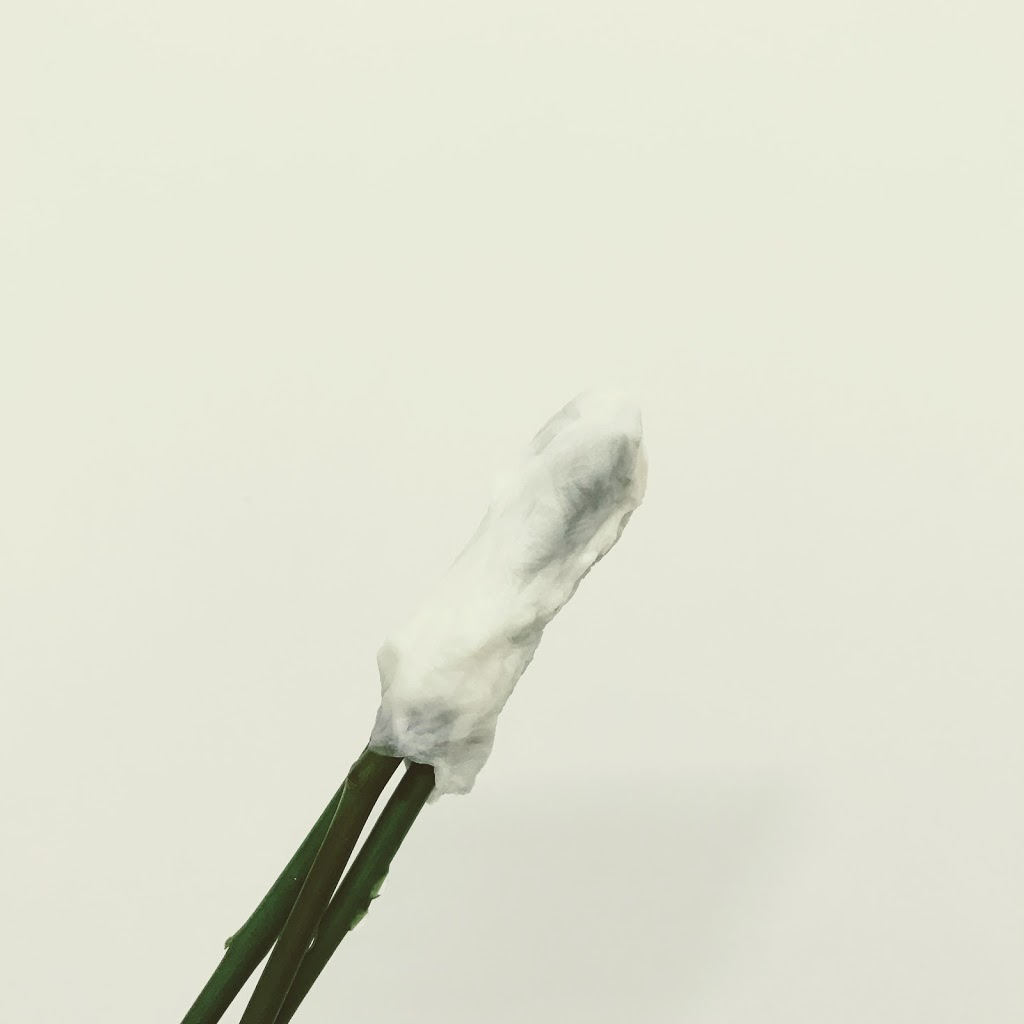 f:id:asunaro-flower:20200614040429j:plain
