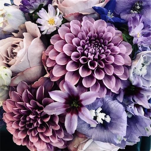 f:id:asunaro-flower:20200614114947j:image