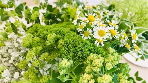 f:id:asunaro-flower:20200614130756j:image