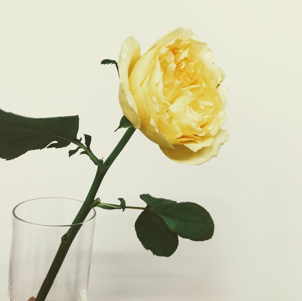f:id:asunaro-flower:20200615001703j:plain