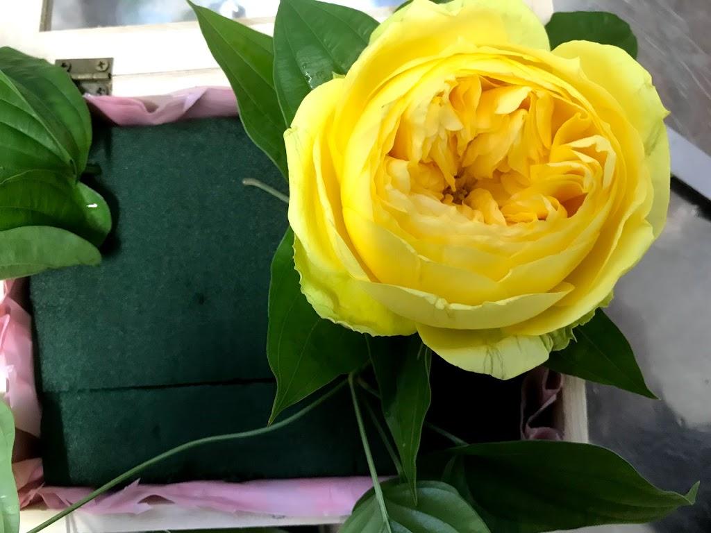 f:id:asunaro-flower:20200615005355j:plain