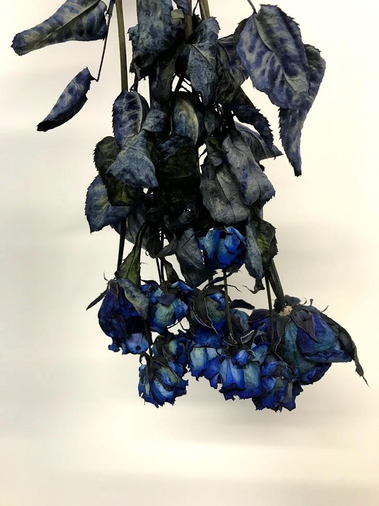 f:id:asunaro-flower:20200615011048j:plain