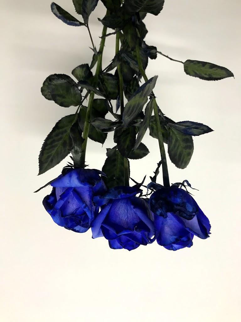 f:id:asunaro-flower:20200615011138j:plain
