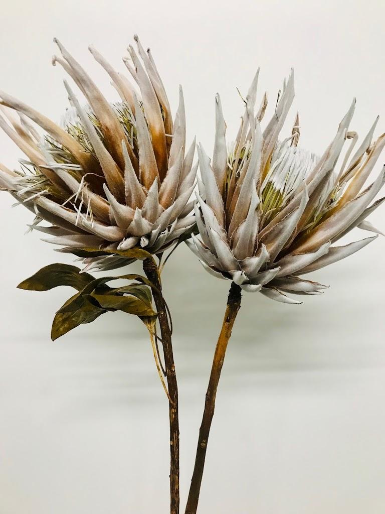 f:id:asunaro-flower:20200615011706j:plain