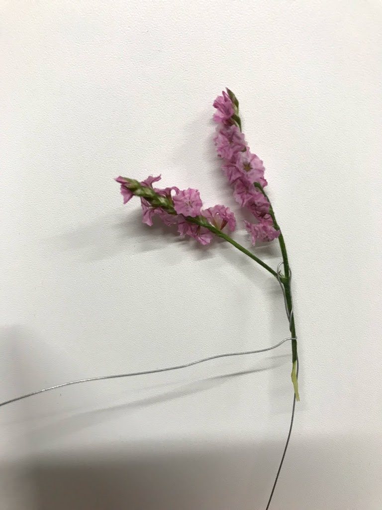 f:id:asunaro-flower:20200615013459j:plain