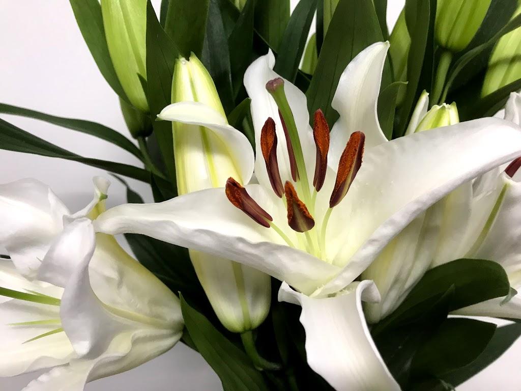 f:id:asunaro-flower:20200615013754j:plain