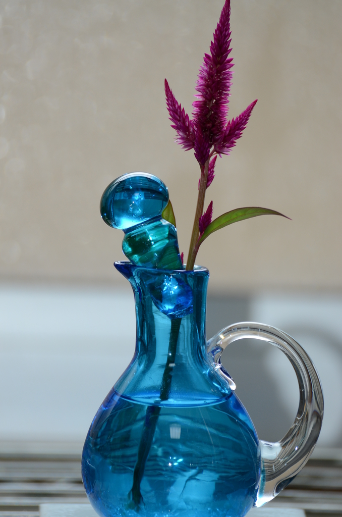 f:id:asunaro-flower:20200615014253j:plain