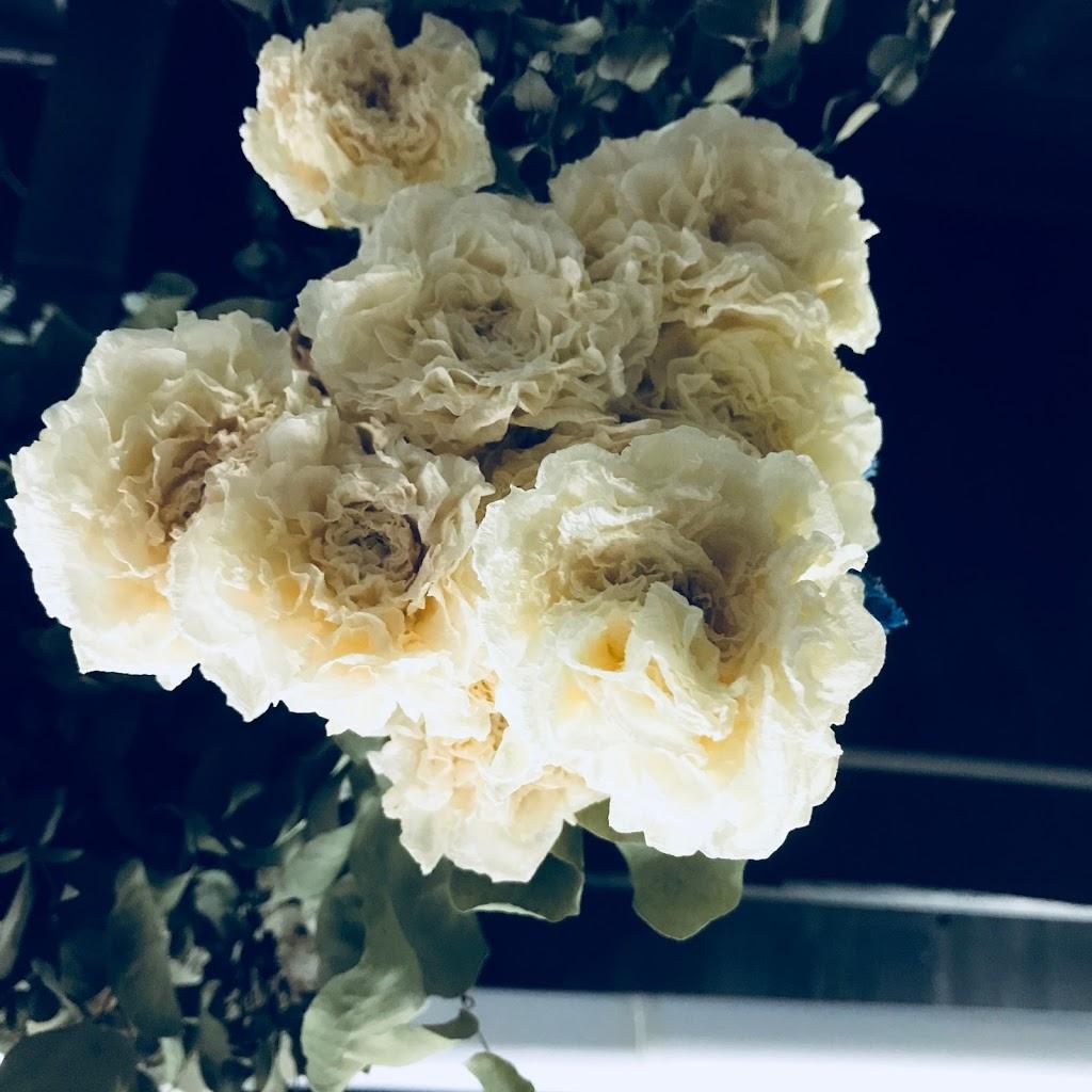 f:id:asunaro-flower:20200615014530j:plain